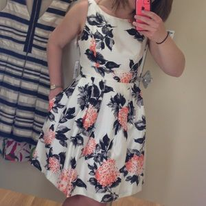 Jessica Howard Floral Pattern Fit and Flare Dress